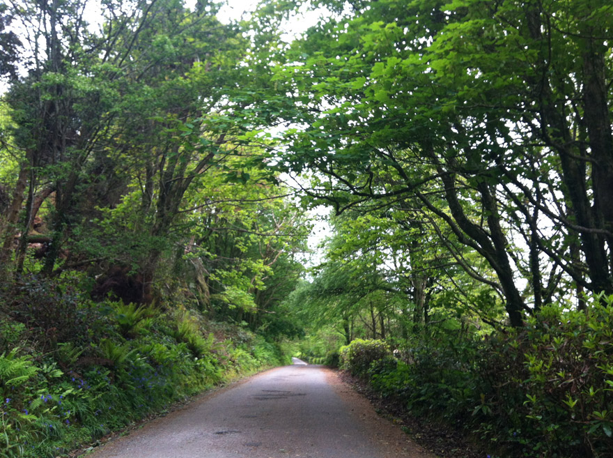 Road-to-Bantry-House
