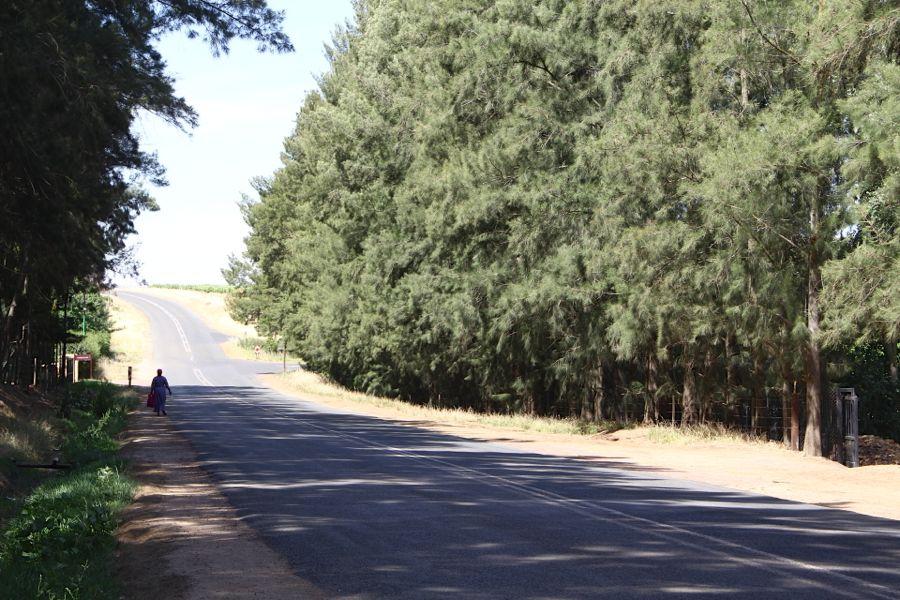 Paardeberg Road – 31
