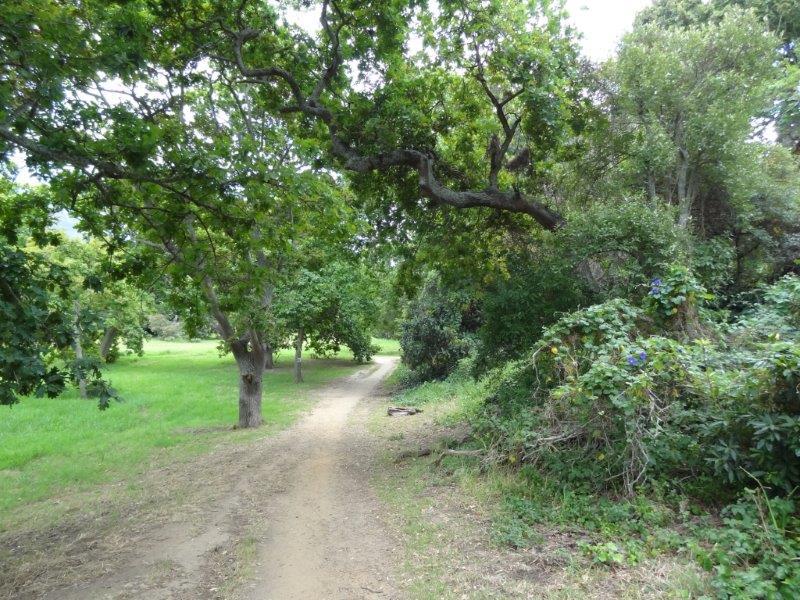 silverhurst trail fitness (7)