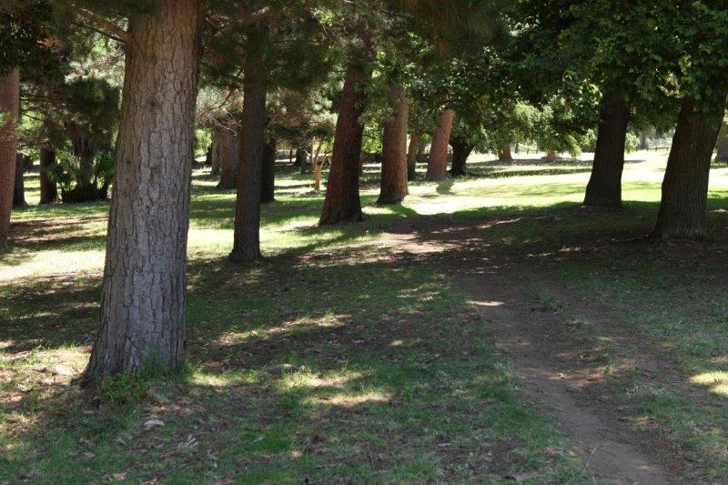 wynberg park (11)